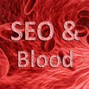 SEO as blood, seo company