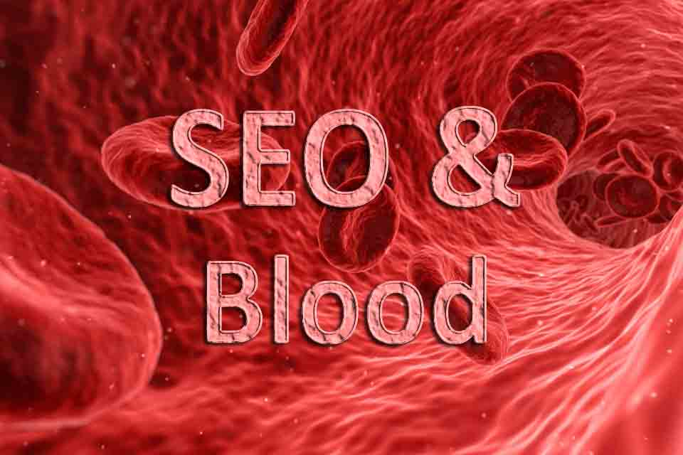 An Effort to Prove SEO as Blood of Website (SEO Company)